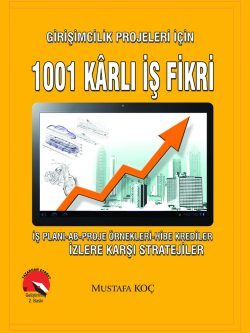1001 Karli Is Fikri