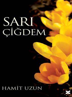 Sari Cigdem